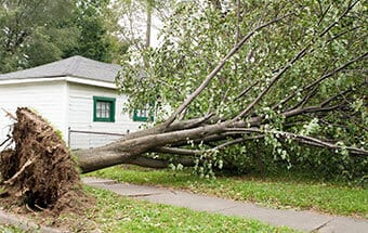 storm cleanup services williamson county il