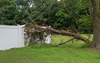 storm destruction cleanup in williamson county il