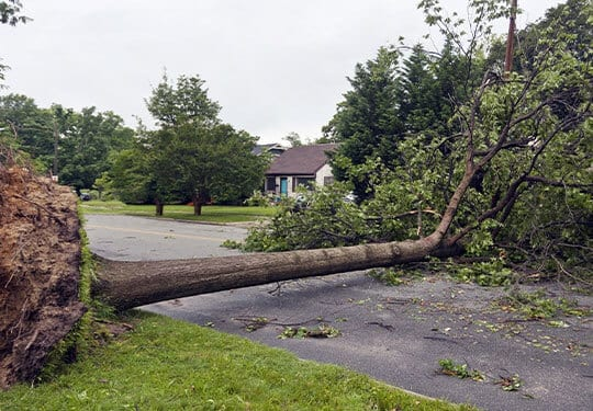 emergency storm damage cleanup williamson county illinois