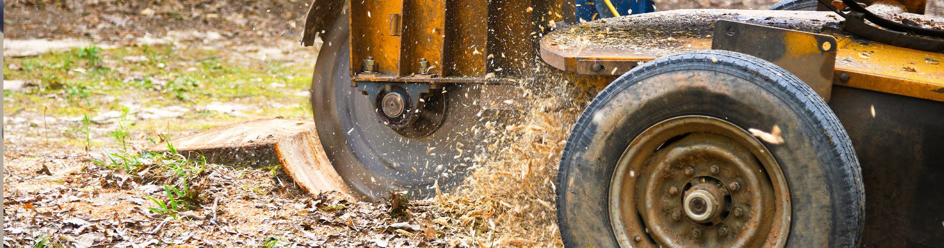 stump grinding services near williamson county il