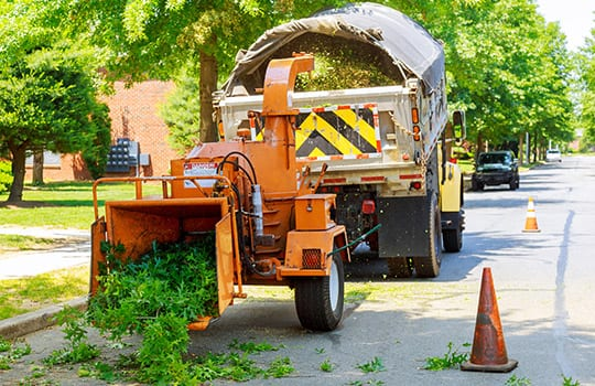 lot cleaning williamson county illinois