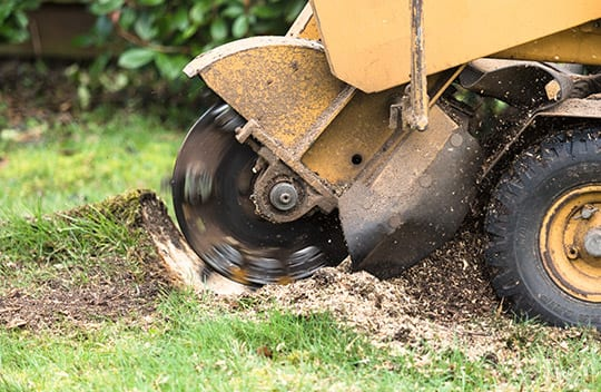 stump grinding williamson county illinois