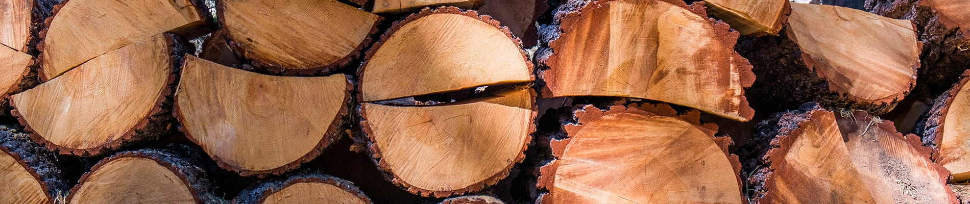 tree removal services west frankfort illinois